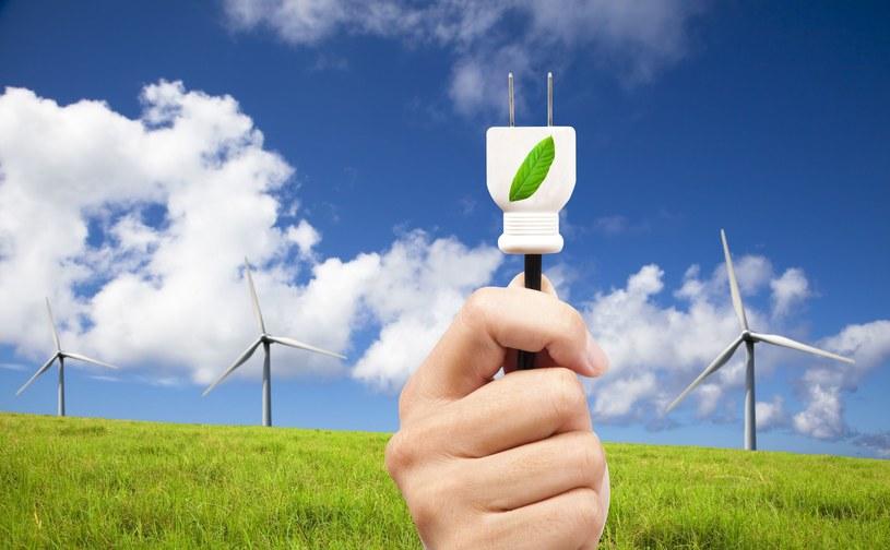Zielone certyfikaty w ciągu dwóch tygodni straciły na wartości prawie 30 proc. /123RF/PICSEL