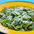 Zielone źródło białka