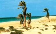 Zielonego Przylądka Wyspy /Encyklopedia Internautica