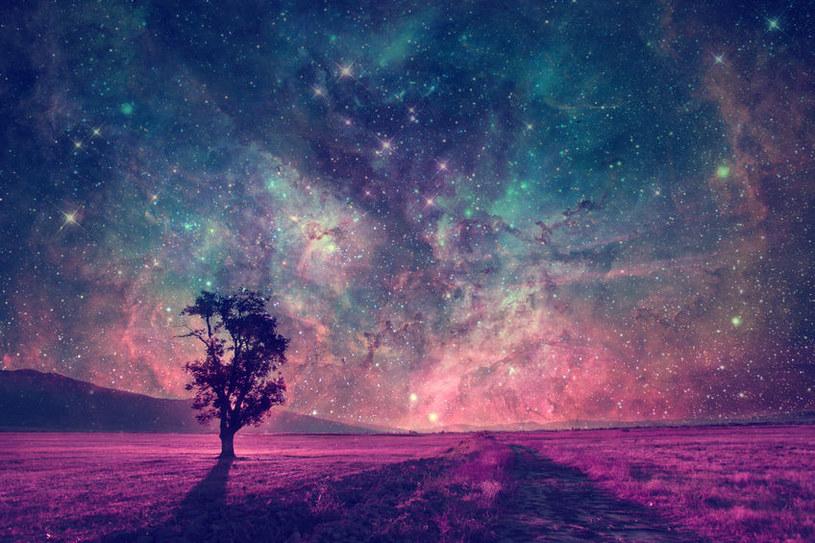 Ziemia wcale nie jest wyjątkowym miejscem /©123RF/PICSEL