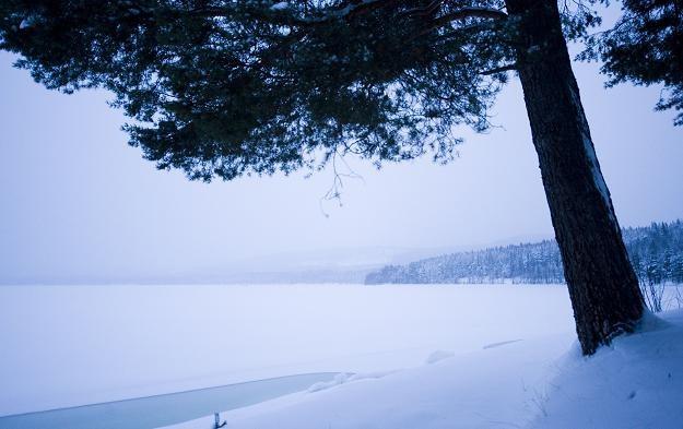 Zima ma być śnieżna i długa /AFP