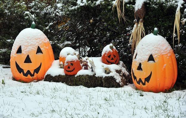 Zimowe Halloween w niektórych regionach USA /AFP