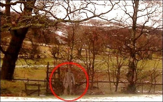 Zjawisko paranormalne? /MWMedia