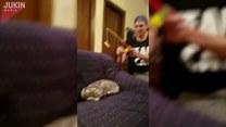 Złapał kota na... wędkę