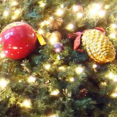 Złóżmy sobie życzenia świąteczne... /AFP