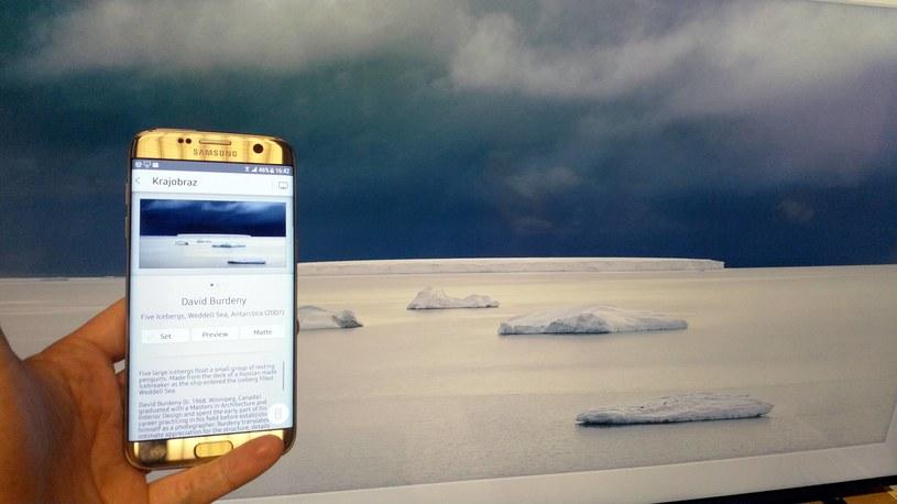 Zmieniać obrazy i ustawienia możemy przy pomocy aplikacji dla smartfonów i tabletów /INTERIA.PL