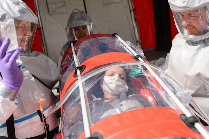 Zmodyfikowany wirus grypy H1N1 może zabić nasz wszystkich /©123RF/PICSEL