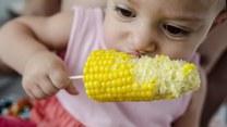 Zmysłowe smaki: Jak gotować kukurydzę?