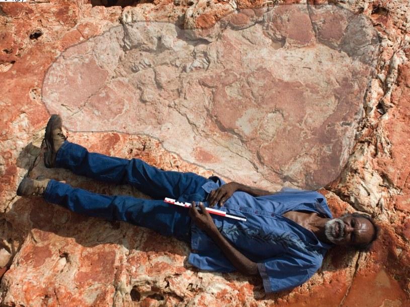 Znaleziony ocisk stopy dinozaura mierzy 1,75 m /materiały prasowe