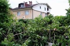 Zniszczenia po burzy w Wyrach