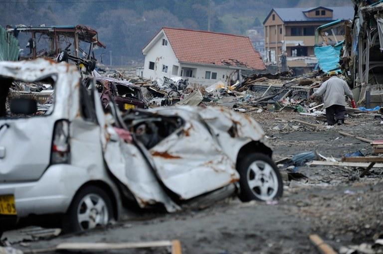 Zniszczenia po przejściu tsunami /AFP