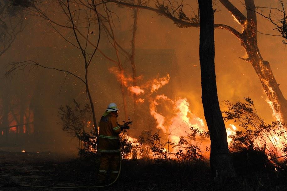 Zniszczonych lub uszkodzonych zostało ok. 300 domów, a 63-letni mężczyzna zmarł przy próbie ratowania swego gospodarstwa /DEAN LEWINS /PAP/EPA