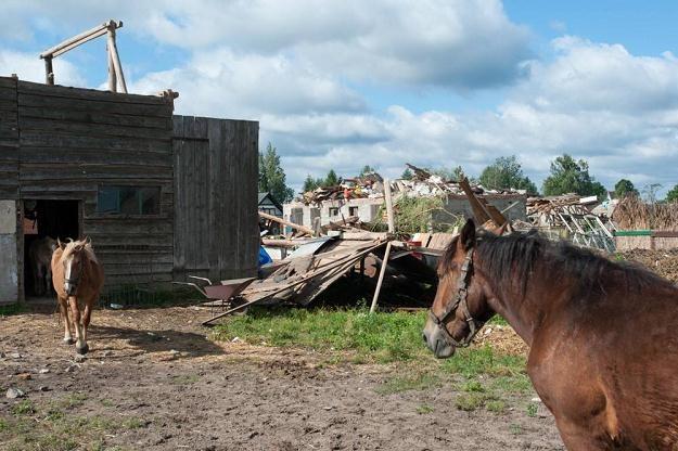 Zrujnowane zabudowania w Wycinkach (Pomorskie)/Fot. Krzysztof Korczak /Reporter