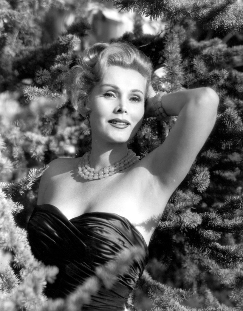 Zsa Zsa Gabor w 1954 roku /Baron / Hulton Archive /Getty Images