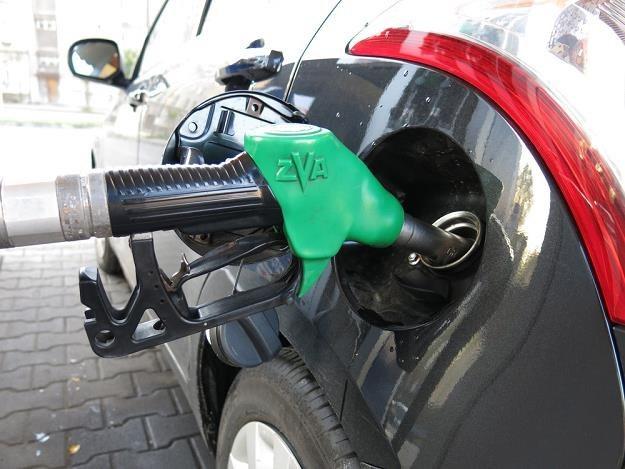 Zużycie paliwa w dużej mierze zależy od kierowcy / Fot: Adrian Slazok /Reporter