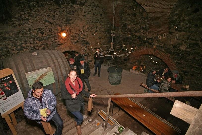 Zwiedzanie i degustacja młodych win /materiały prasowe
