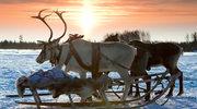 Zwiedzanie Laponii