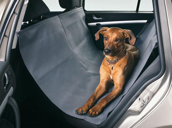 Zwierzę musi podróżować komfortowo i bezpiecznie /materiały prasowe