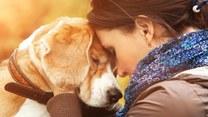 Zwierzęta, które leczą ludzi