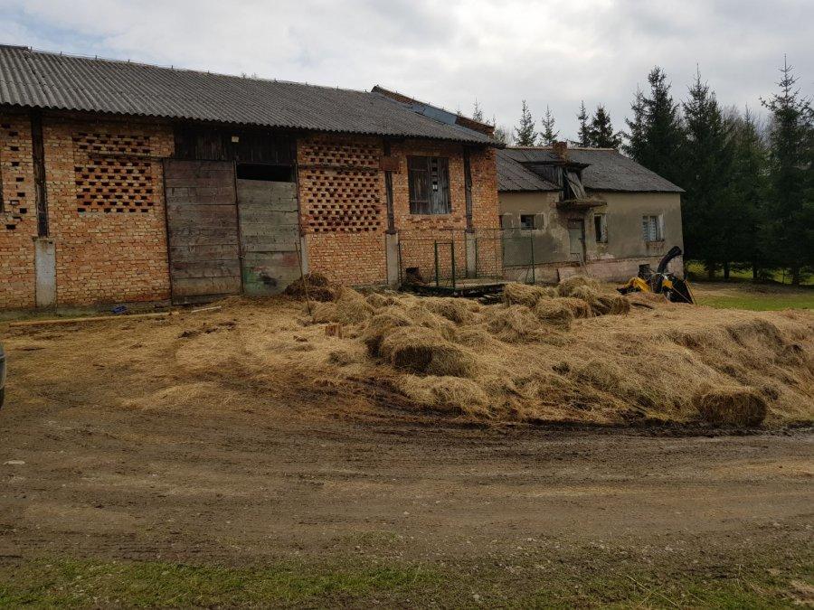 Zwierzęta przebywały w tym gospodarstwie /Policja