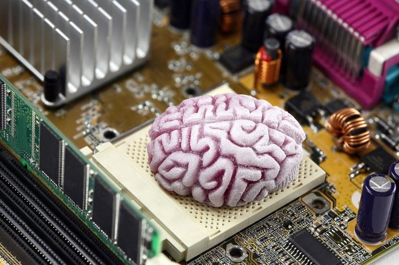 Żyć wiecznie w komputerze - taka jest wizja pewnego naukowca z San Francisco /©123RF/PICSEL