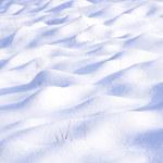 Życie może ukrywać się pod śniegiem