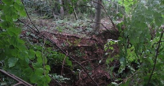 Osuwisko na zboczu góry Prusów ma już około 200 metrów długości. Wczoraj runął dom, z którego w piątek ewakuowano mieszkańców. Ci, których ewakuowano - w sumie 9 osób - mieszkają u bliskich i sąsiadów.