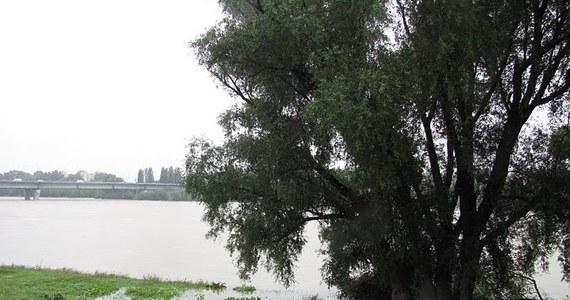 Deszczowo ma być do piątku, ale opady - jak uspokaja Instytutu Meteorologii i Gospodarki Wodnej - nie wpłyną znacznie na wysokość poziomu wody w Wiśle i Odrze. Stany alarmowe na rzekach będą przekroczone głównie w związku z przemieszczaniem się fali kulminacyjnej. Woda nie powinna przelewać się przez wały. Opady mogą jednak spowodować lokalne podtopienia na terenach rzek nizinnych.
