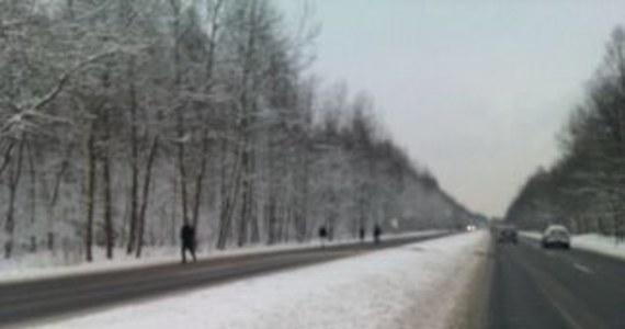 W Polsce szaleją śnieżyce, kierowcy stoją w wielokilometrowych korkach, ludzie ślizgają się na ulicach, szkoły odwołują lekcje. A w Sosnowcu zabrakło… soli do posypywania ulic. Drogowcy obiecują jednak, że jutro będzie lepiej…