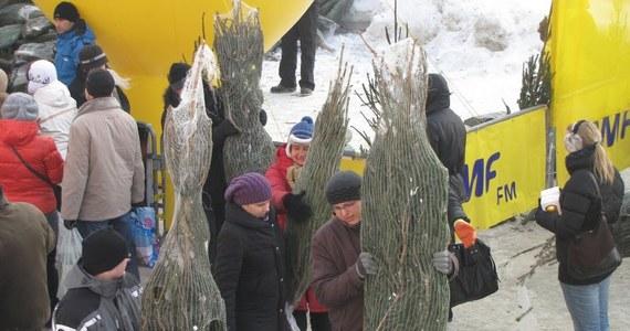 """O godz. 11 zaczęliśmy kolejny dzień akcji """"Choinki pod Choinkę od RMF FM"""". W Łodzi na rogu Piotrkowskiej i Piłsudskiego czeka na Was tysiąc świątecznych drzewek. Pierwsze sto osób dostanie również upominek - bombkę oraz słodycze."""
