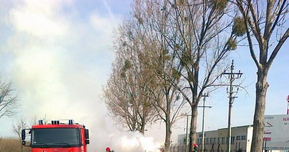 Na drodze S5 w miejscowości Kowalewo koło Szubina zapaliła się ciężarówka przewożąca słomę. Droga jest zablokowana. Strażacy gaszą pożar. Informację i zdjęcia otrzymaliśmy na Gorącą Linię RMF FM od pana Tomka.
