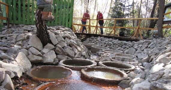 Jedenaście tajemniczych, betonowych kręgów w środku lasu, w każdym woda o innym kolorze i zapachu, a na dodatek wydobywa się z nich niebezpieczny gaz. To jeszcze nie koniec, w tym miejscu znajdował się tajny ośrodek, w którym prowadzono badania nad pożywieniem dla kosmonautów. I to nie jest sceneria kolejnego odcinka Archiwum X, a cichy, spokojny ośrodek w Tyliczu koło Krynicy Zdrój.