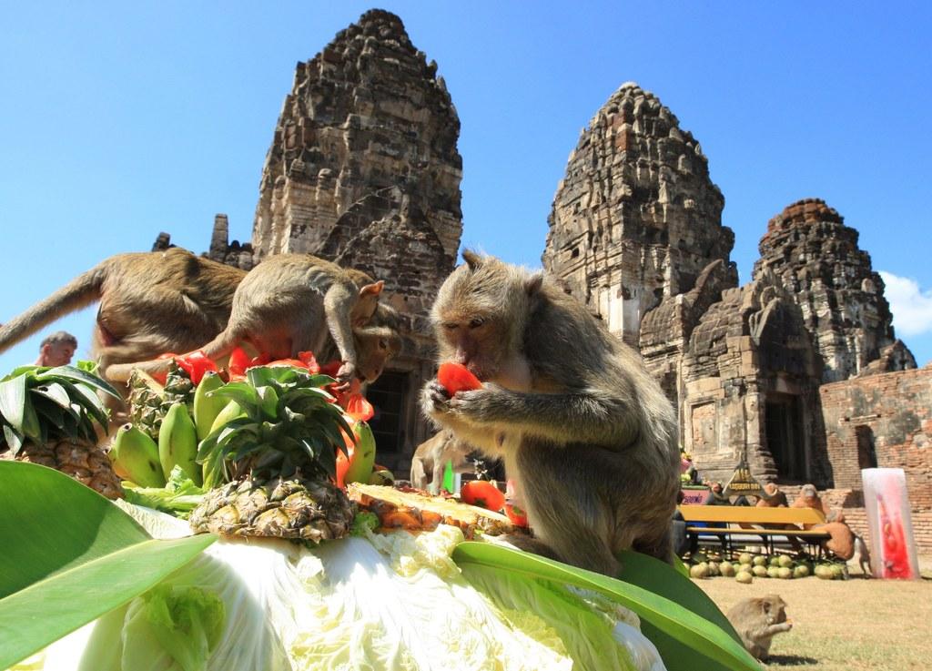ремесло так прикольные картинки про тайланд несколько минут кипящую