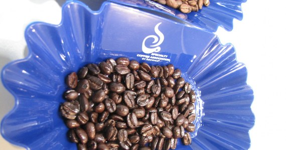 Czarna, biała czy na przykład z dodatkiem syropu lawendowego. Kawę można pić w różnych postaciach. Ten czarny napój jest tak popularny, że doczekał się już nawet swojego festiwalu. Impreza, która w ten weekend została zorganizowana w Łodzi, to okazja, by podpatrzeć najlepszych baristów w akcji i posłuchać prawdziwych znawców kawy.