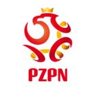 Wybór nowego szefa Polskiego Związku Piłki Nożnej