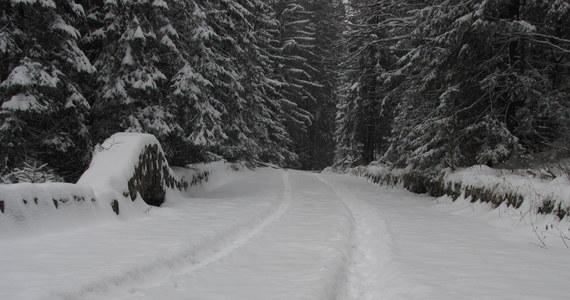Kilkanaście centymetrów śniegu pokryło tatrzańskie szczyty. Białego puchu jednak wciąż przybywa. W związku z tym ratownicy Tatrzańskiego Ochotniczego Pogotowia Ratunkowego zdecydowali o ogłoszeniu pierwszego, najniższego stopnia zagrożenia lawinowego.