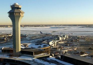 Celnicy odkryli na lotnisku… 18 ludzkich głów