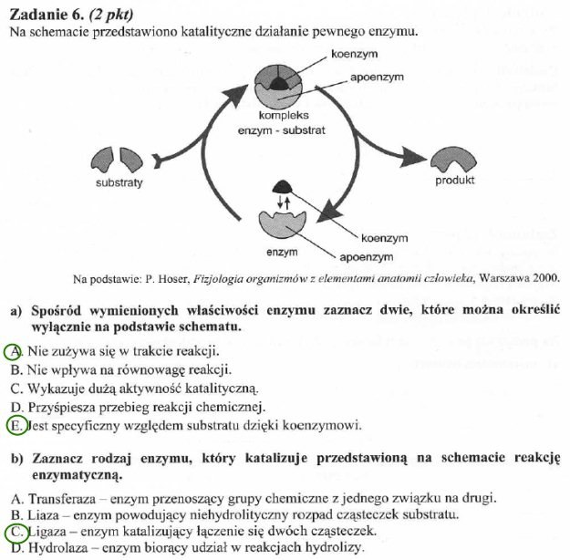matura biologia styczen 2012