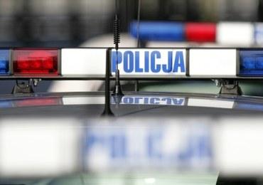 Nielegalny transport koni z Niemiec zatrzymany w Polsce