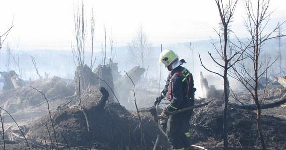 Słowaccy strażacy wspomagani przez wojsko od wczorajszego popołudnia walczyli z ogromnym pożarem lasu w pobliżu Starego Smokowca w Tatrzańskim Parku Narodowym (TANAP). Płomienie, które pojawiły się w trudno dostępnym terenie, strawiły około 50 hektarów drzew i poszycia. Pożar udało się opanować dopiero w nocy.