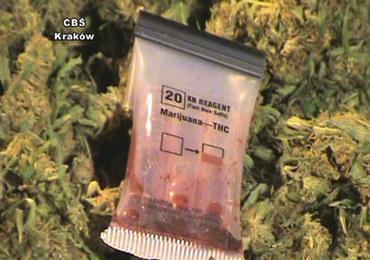 Kraków: 11 kiboli w rękach CBŚ. Produkowali narkotyki na masową skalę