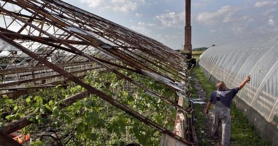 Aż 16 tysięcy hektarów upraw zniszczyły na Opolszczyźnie czerwcowe ulewy i gradobicia. Straty zgłosili właściciele prawie tysiąca gospodarstw. Najbardziej ucierpieli rolnicy z gmin Kluczbork, Pokój, Strzelce Opolskie i Rudniki. Według władz, to na razie wstępne szacunki.