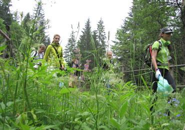 Setki wolontariuszy na szlakach. Walczą o Czyste Tatry!