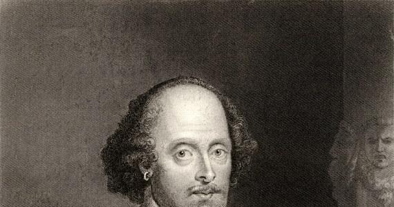 To William Szekspir mógł być autorem trzech sztuk teatralnych epoki elżbietańskiej, dotychczas przypisywanych innym lub anonimowych autorom, wykazały badania komputerowe pod kierunkiem prof. Jonathana Bate'a. Przeanalizował on wszystkie znane sztuki tamtego okresu.