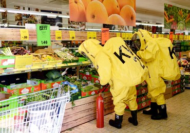 Panika w sklepie z powodu jadowitego pająka