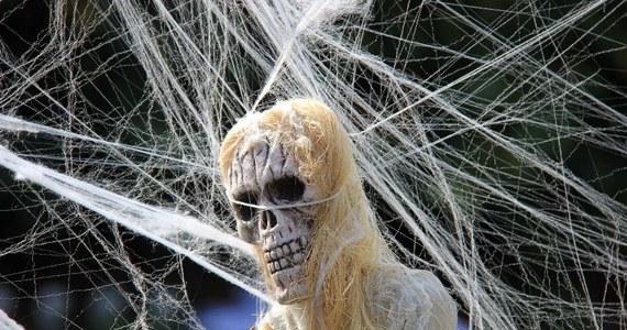 W Stanach Zjednoczonych trwają wielkie przygotowania do wieczornych zabaw. Już dziś Halloween - jeden z bardziej komercyjnych wieczorów w roku za Oceanem.