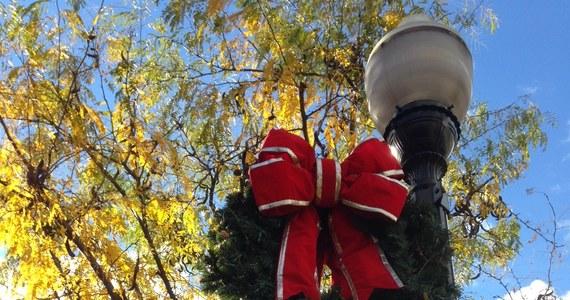 Bożonarodzeniowy sezon w USA został już oficjalnie otwarty. Dzień po Święcie Dziękczynienia w Stanach Zjednoczonych normą jest ubieranie choinek, dekorowanie domów i robienie świątecznych zakupów.