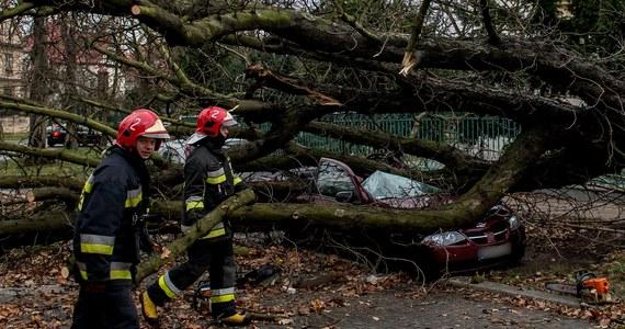 Blisko 300 budynków uszkodził orkan Ksawery, który szalał nad Polską w zeszłym tygodniu. Zniszczonych zostało ponad 120 domów mieszkalnych i około 20 placówek oświatowych. Wiatr wyrządził też potężne szkody w energetyce - w szczytowym momencie prądu nie miało 720 tysięcy odbiorców.