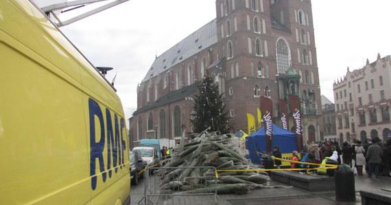 Kraków był dwunastym i ostatnim przystankiem na trasie naszego choinkowego konwoju! Piękne, pachnące drzewka rozdaliśmy na Rynku Głównym. Tam również można było posłuchać kolęd i wziąć udział w naszym świątecznym karaoke. Wielki Finał kolędowania ruszy w poniedziałek!