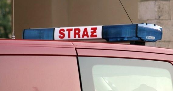 Jedna osoba zginęła w pożarze, który wybuchł po południu w kamienicy w centrum Poznania. Ucierpiało pięć osób, a siedem kolejnych ewakuowano. Przyczyny tragedii nie są na razie znane.
